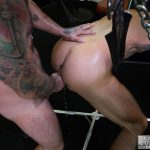 Bareback-Cum-Pigs-Dolf-Dietrich-and-Rogue-Status-Breeding-18-150x150 Dolf Dietrich Gets Bareback Fucked In A Sling By Rogue Status