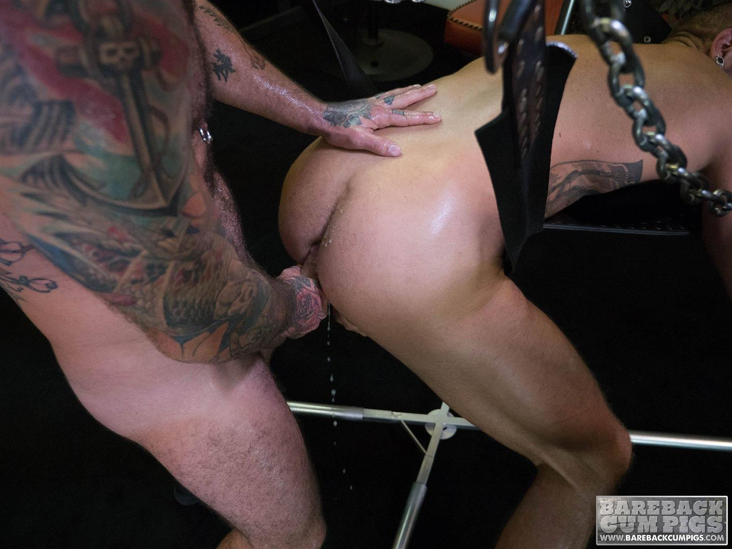 Bareback Cum Pigs Dolf Dietrich and Rogue Status Breeding 18 Dolf Dietrich Gets Bareback Fucked In A Sling By Rogue Status