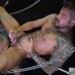 Bareback-Cum-Pigs-Dolf-Dietrich-and-Rogue-Status-Breeding-19-150x150 Dolf Dietrich Gets Bareback Fucked In A Sling By Rogue Status